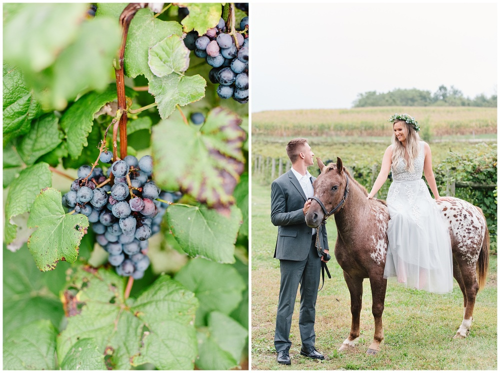 fort wayne indiana engagement photographer vineyard horse champagne_0176