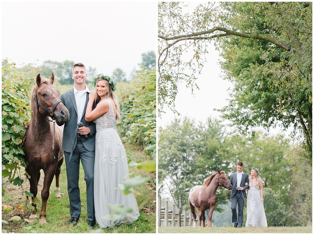 fort wayne indiana engagement photographer vineyard horse champagne_0182