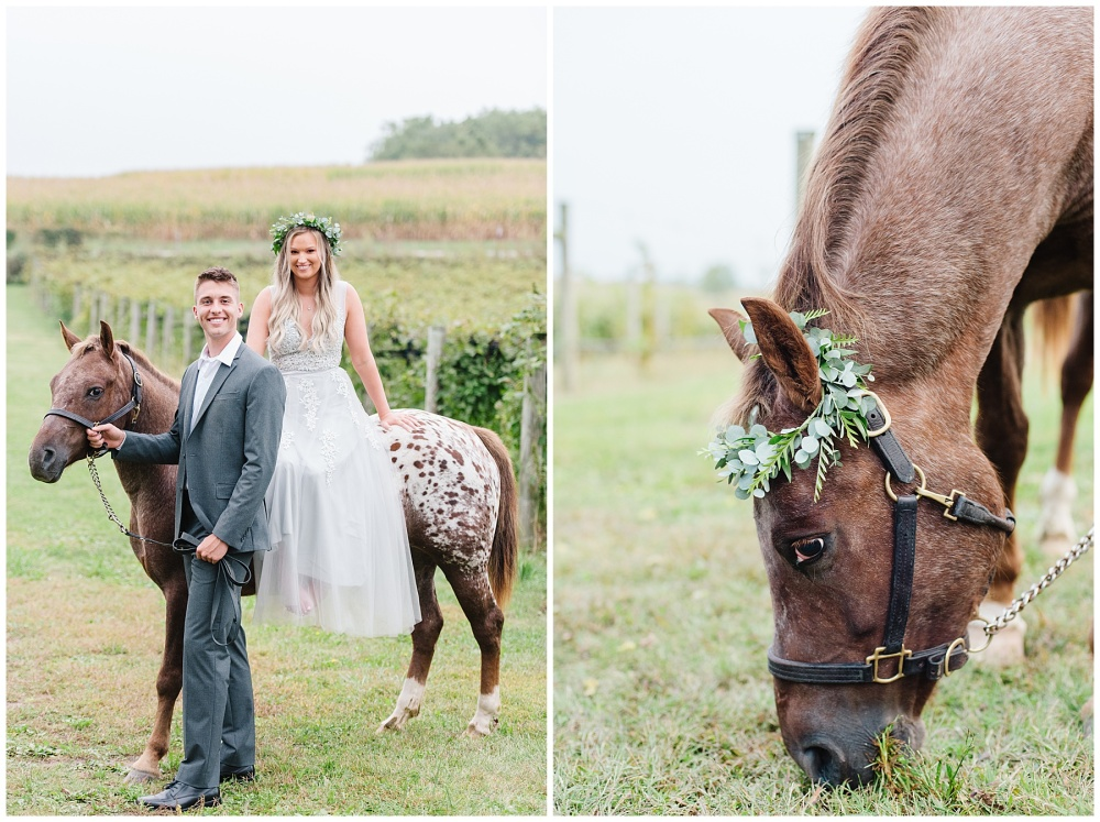 fort wayne indiana engagement photographer vineyard horse champagne_0190