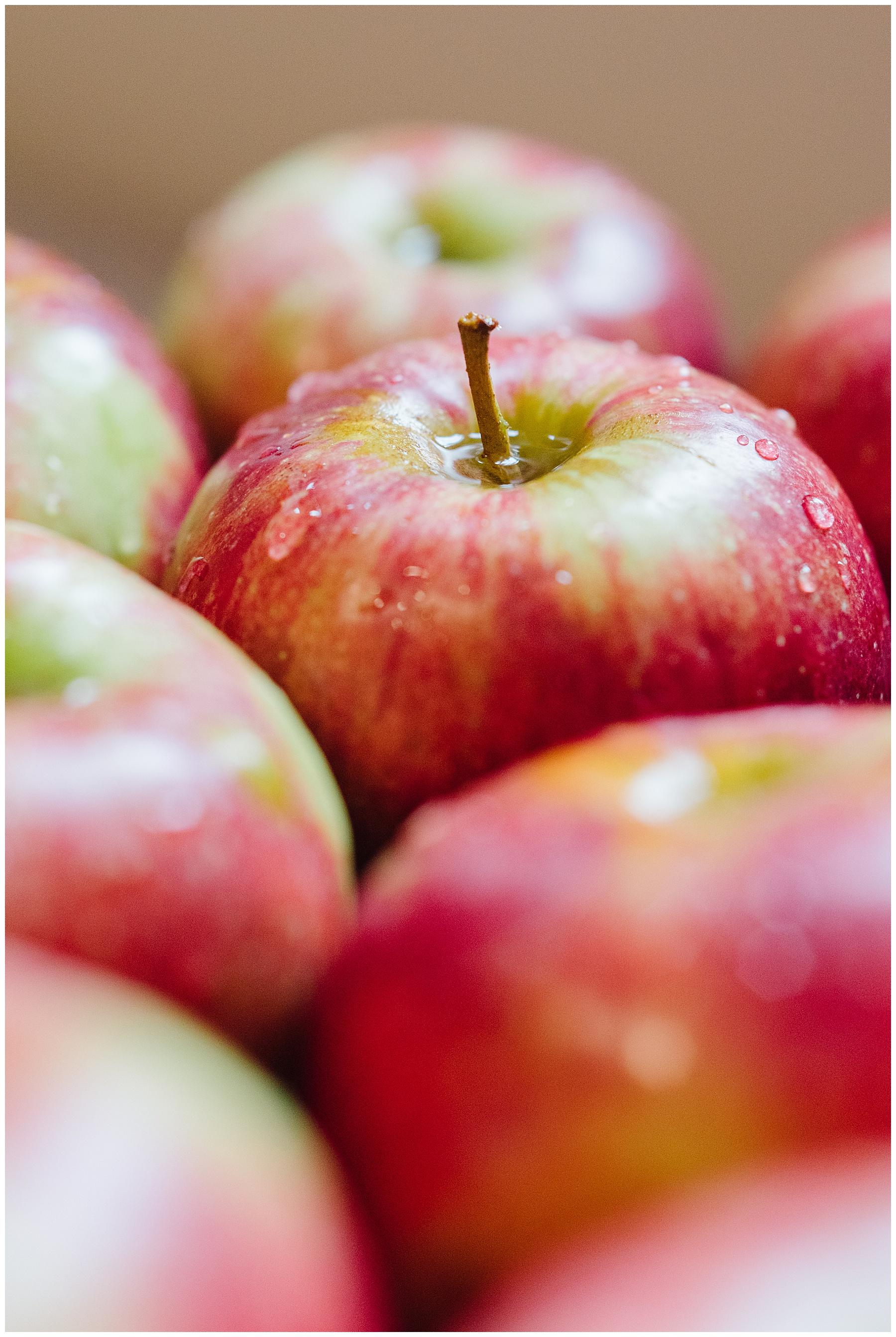 fort wayne indiana family photographer apple orchard_0225